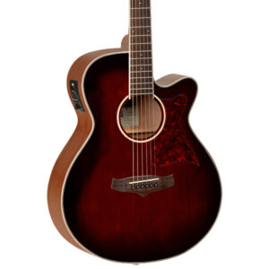 Tanglewood TW4 E WB Electro-Acoustic Guitar - Body