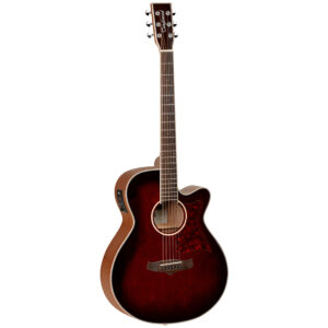 Tanglewood TW4 E WB Electro-Acoustic Guitar - Front